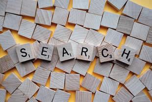 検索システムの開発、検索UXの改善、コンサルティング